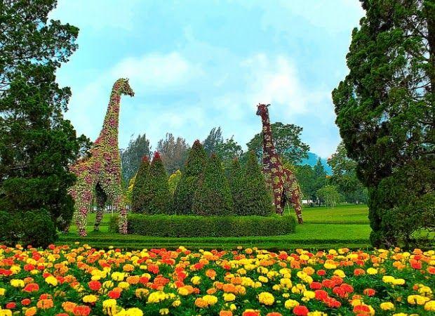 Taman Bunga Pratin Purbalingga
