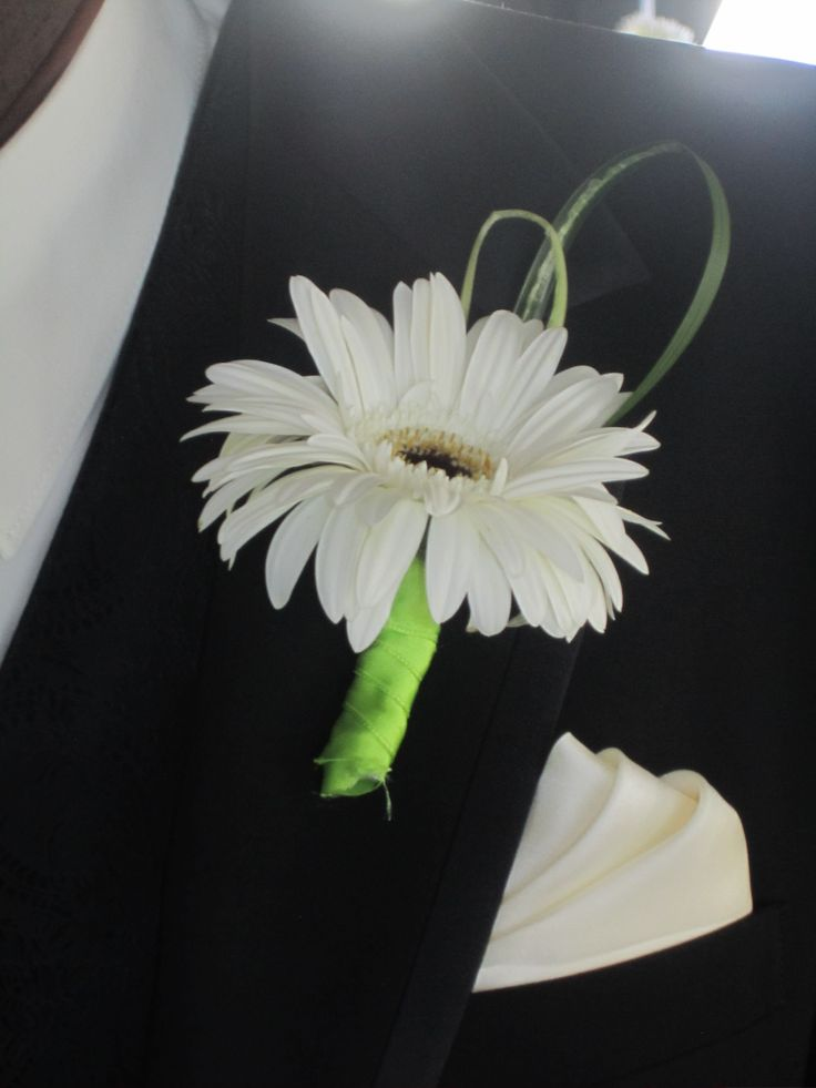 white gerbera daisy boutonniere. I would definitely cover the stem with black…