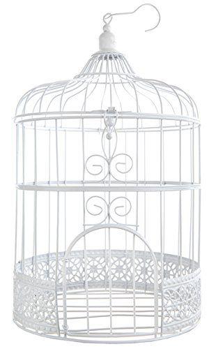 cage a oiseaux decorative