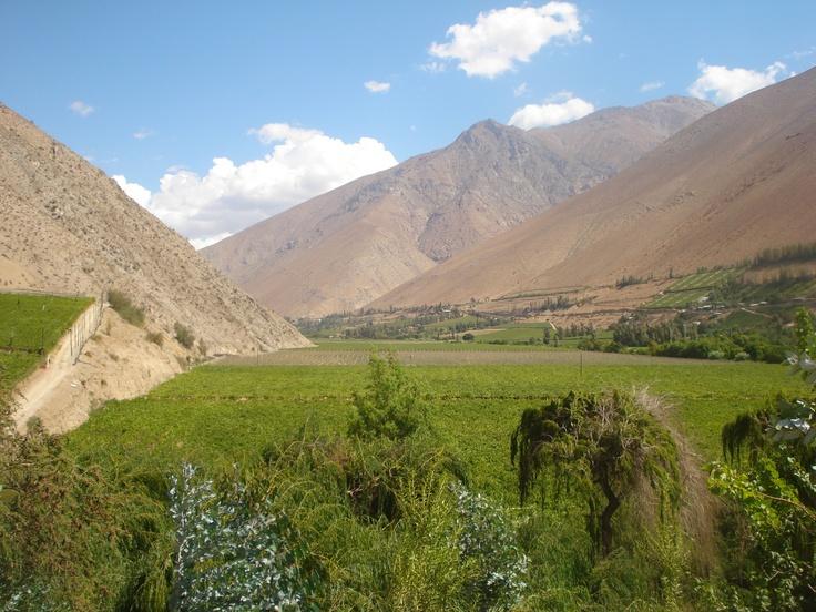 vista de la localidad de Pisco, iv region
