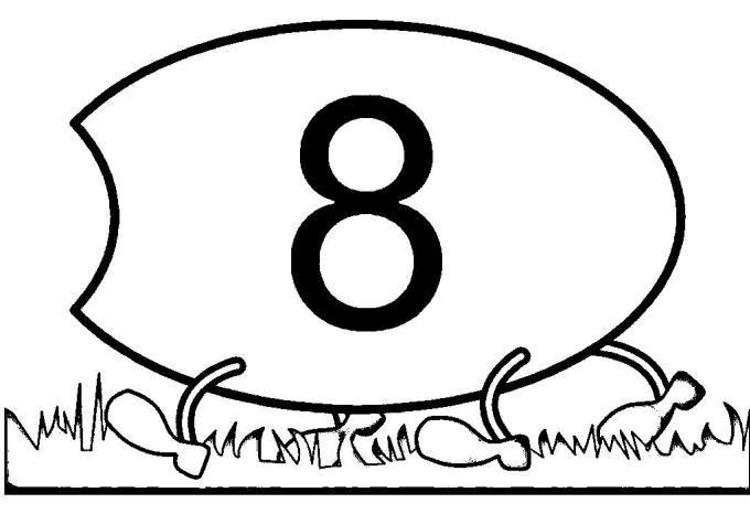 centopeia8 (1)