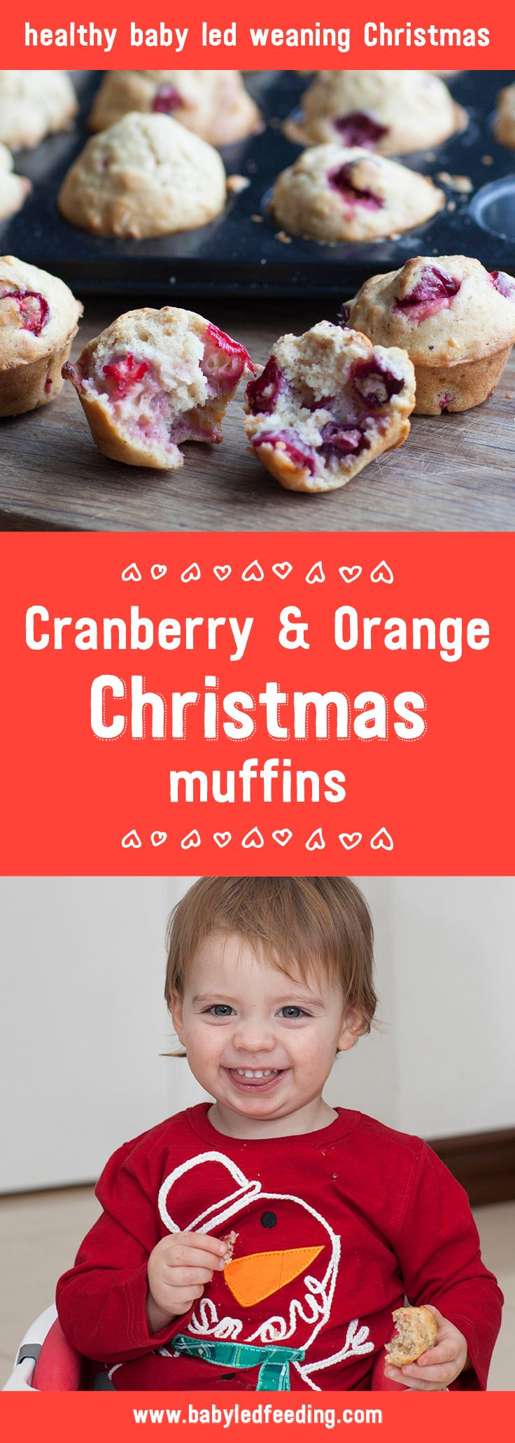 These yummy Cranberry & Orange Christmas Muffins are a healthy Christmas recipe for baby led weaning. Full of goodness & perfect for Santa!