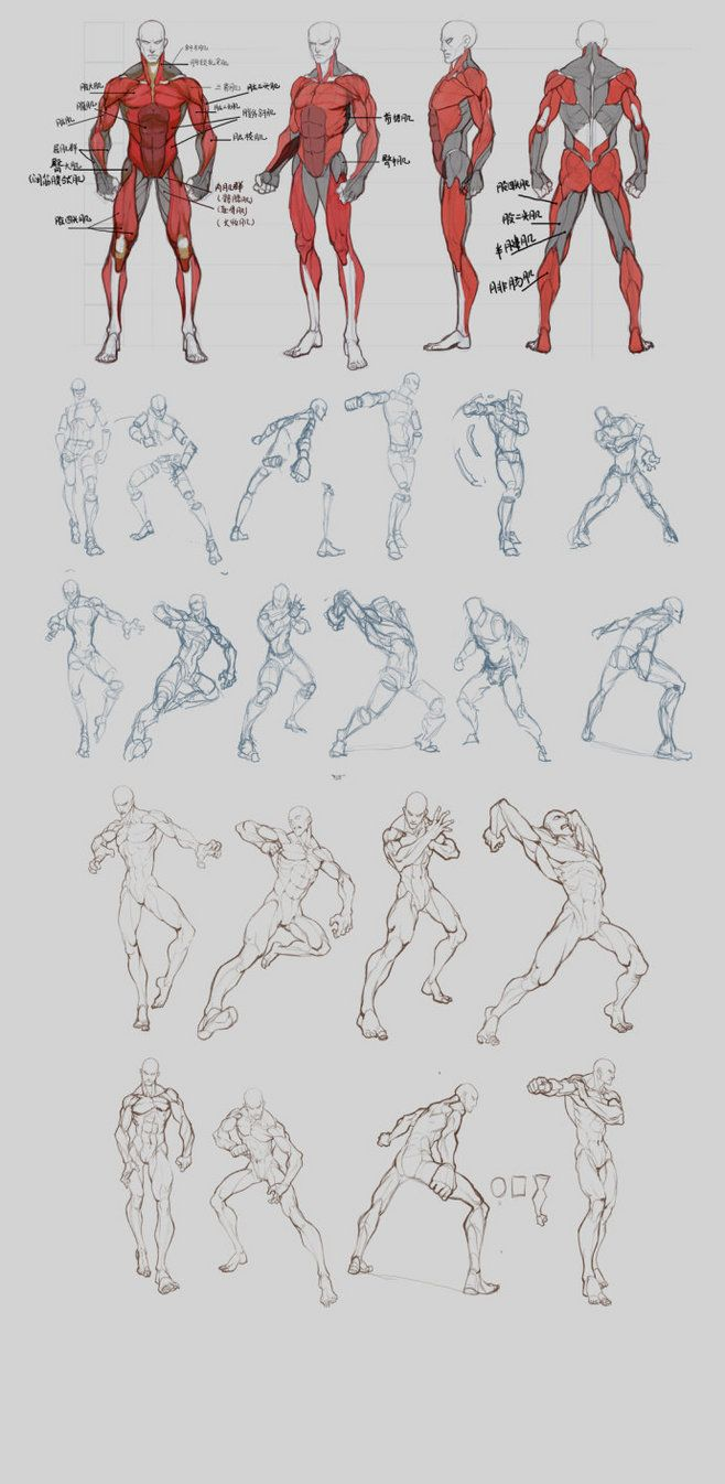 Poses Reference Gesture Drawing