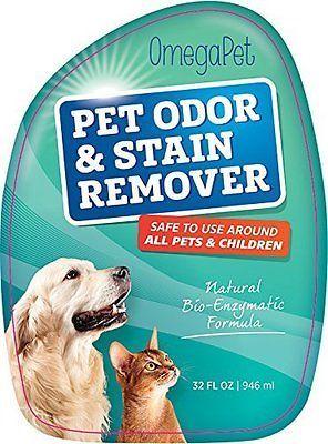 Carpet Cleaning Dog Urine