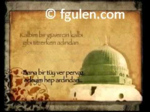 Fethullah Gülen: Medine'nin Gülü