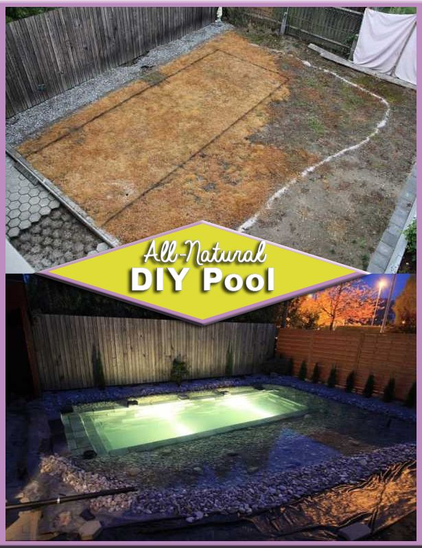 Family Transforms Their Backyard With An All-Natural DIY Pool