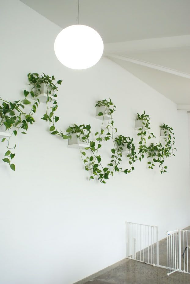 vertical garden >> use single wall shelf from Ikea! Love this idea!