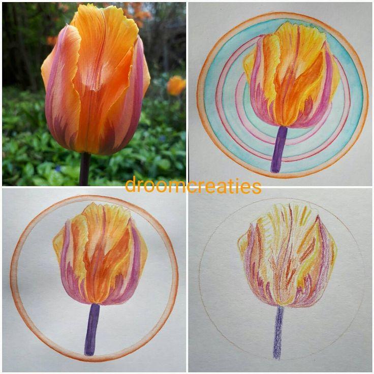 Mandala aquarel painting of a tulip with gorgeous orange colors!   #mandala #mandalasharing #mandalaart #lovemandalas #loveflowers #tulip #tulp #aquarel #aquarelpainting #aquarelart #watercolor #watercolorart #creative #drawing #painting #orangetulip #oranjetulp #orange #gorgeous #botanicalart #botanical #bloem #dutchtulip #droomcreaties