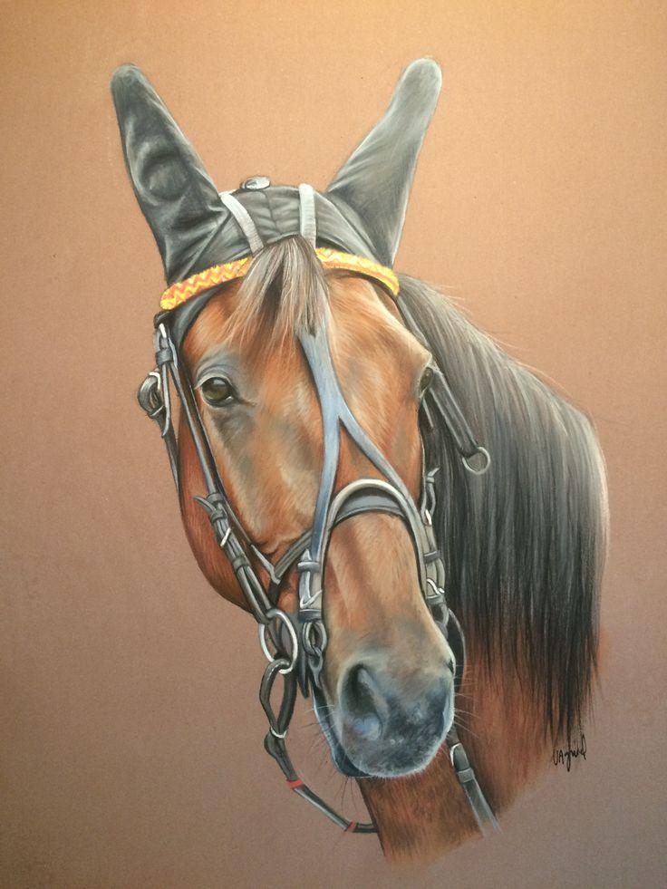 dessin de cheval au pastel