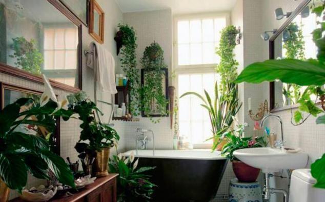 Bubble gardenista | Oikia Magazine