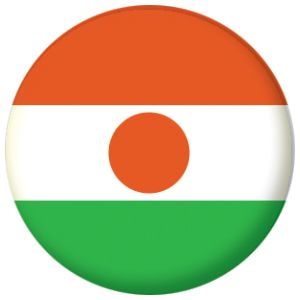 Niger Country Flag