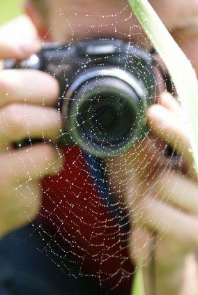 Adding Dew Drops to Enhance a Macro Photograph :: Digital Photo Secrets