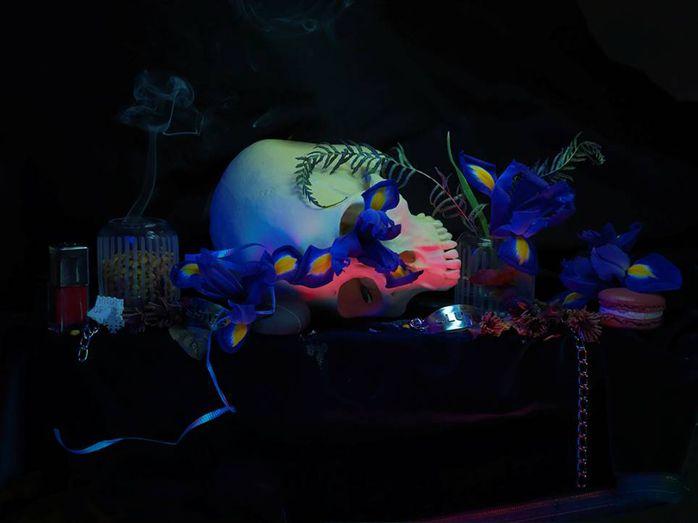 Fiona Pardington - Still Life with Iris, Skull and Magnolia