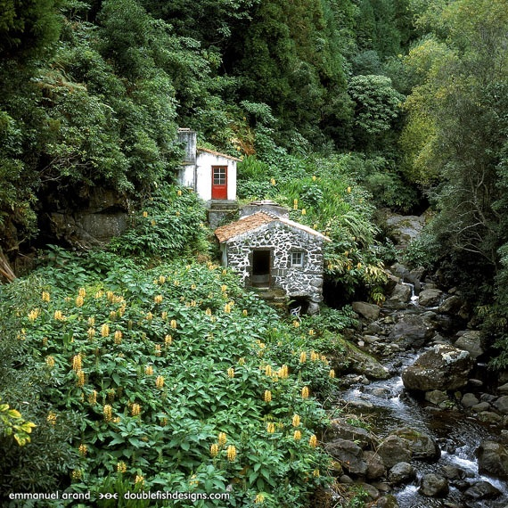 flores azores island - A stone hut and house on a brook in a gully and with flowers indicates the rural nature of the island and the beauty of its scenery.
