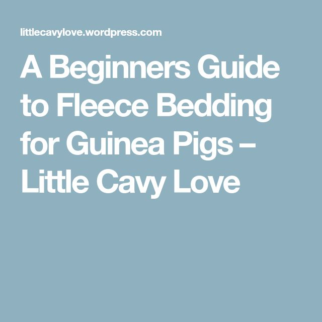A Beginners Guide to Fleece Bedding for Guinea Pigs – Little Cavy Love