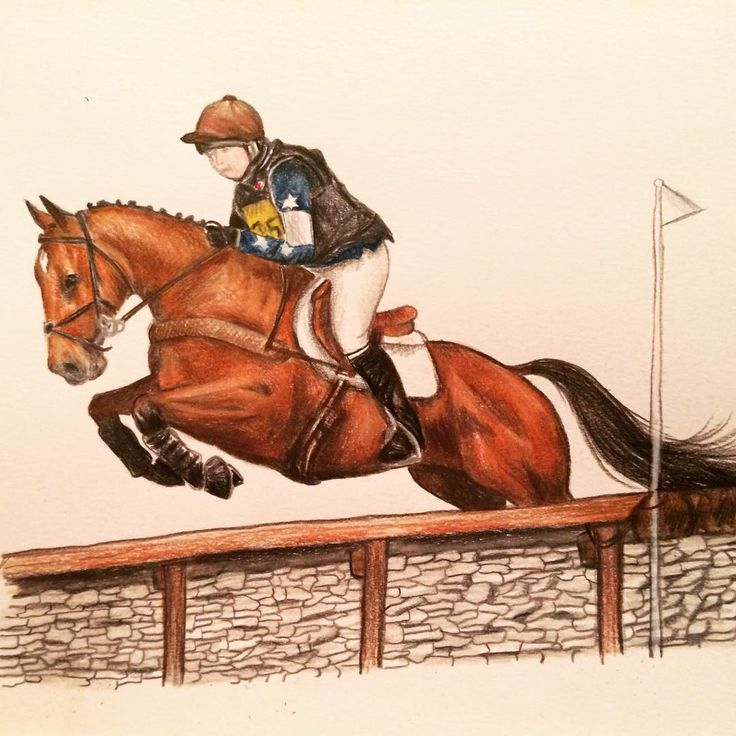 #horseartist #commission #eventer #eventing #horseportrait #eventersofinstagram #crosscountry #jumping #bay #tb