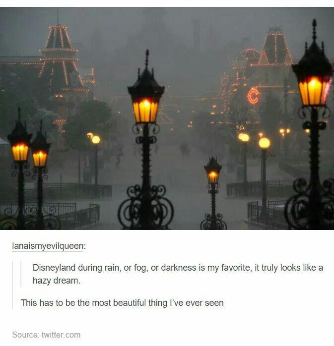 Disney in the fog