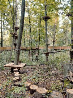 diy low ropes courses - Google Search