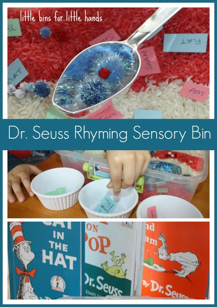 Dr. Seuss Sensory Bin Rhyming Activity. Visit pinterest.com/arktherapeutic for more #sensoryplay ideas