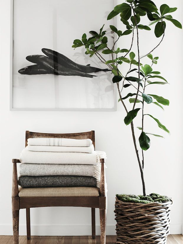 A soft pile of blankets in a fabulous mid-century modern home in Los Angeles. Pia Ulin / Kinfolk Home.