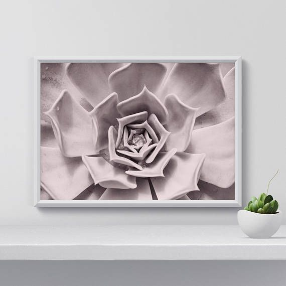 Hey, I found this really awesome Etsy listing at https://www.etsy.com/listing/558618385/succulent-wall-art-botanical-print