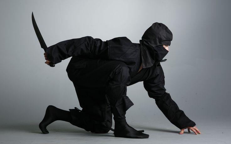 Ниндзя: боевое искусство