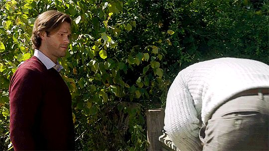Sam Winchester and Dean Winchester / Jared Padalecki and Jensen Ackles