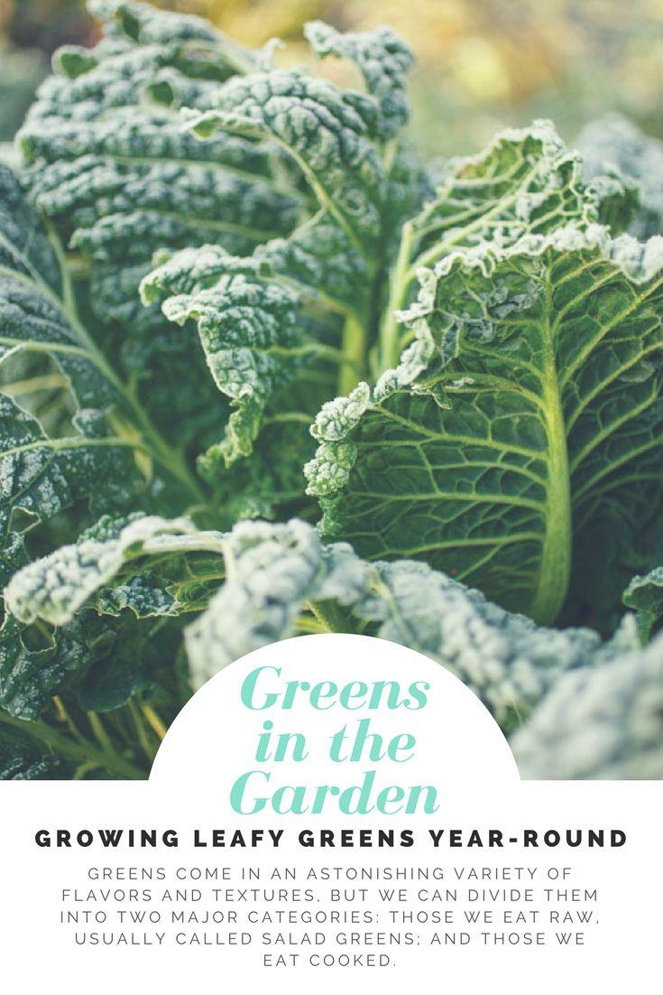 160 best cold season gardening images on pinterest gardening