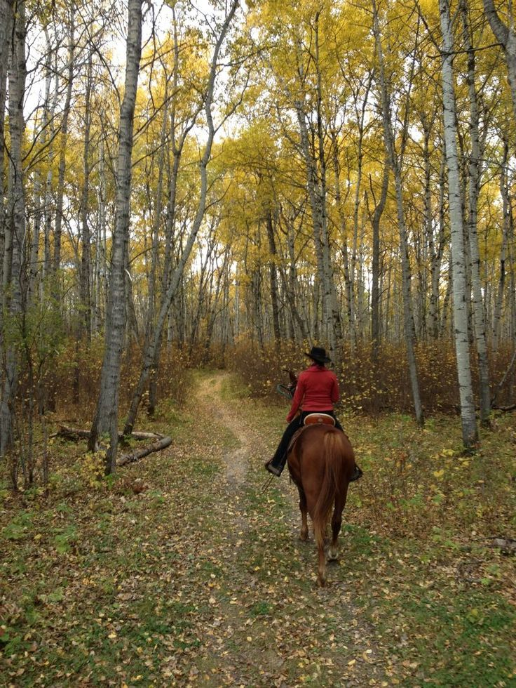 Horse Riding Holidays in Canada