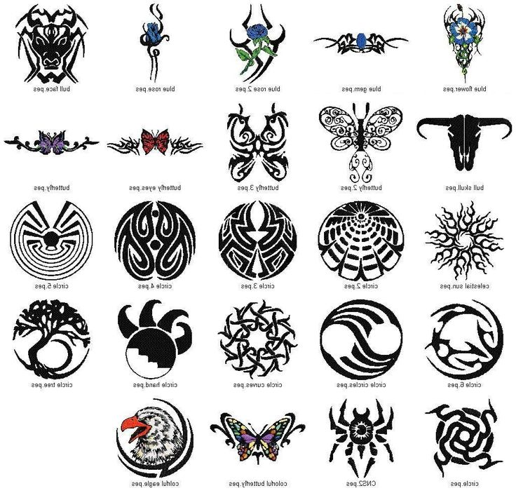 Native American Warrior Symbol Tattoos