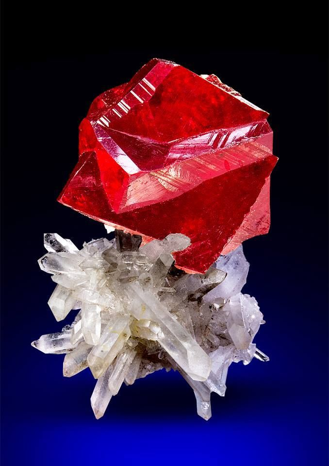 Cinnabar on Quartz --- Tongren Mine, China
