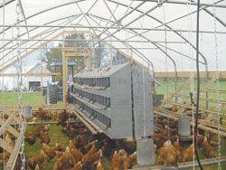 FARM SHOW - Hoop House Chicken Coop Takes Pasture Production To New Level