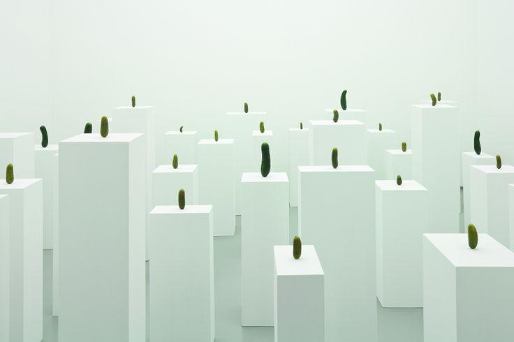 Carl Spitzweg – Erwin Wurm | Aktuell | Ausstellungen | Leopold Museum