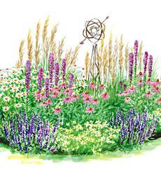 Best Garden Full Sun Perennials Images On Pinterest Flower