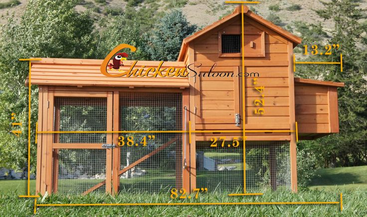 Pinterest discover and save creative ideas for Chicken coop dimensions