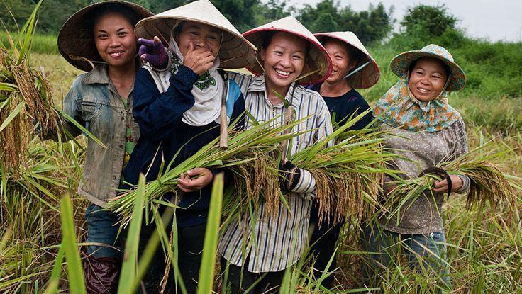 Oxfam Wereldwinkels zijn actief in campagnes en eerlijke handel.