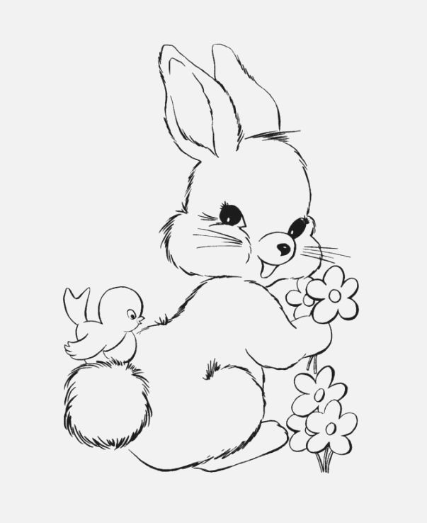 photograph relating to Pin the Tail on the Bunny Printable known as Easter Bunny Drawing In the direction of Print at  Absolutely free for