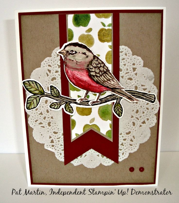 Best Birds Stamp Set and Birds & Blooms Thinlits over a Cherry Cobbler and Fruit Stand Designer Series Paper scraps banners and Delicate White Doilies makes a cheerful card to send for a birthday, get well or thinking of you!  http://stampinwithpat.blogspot.com