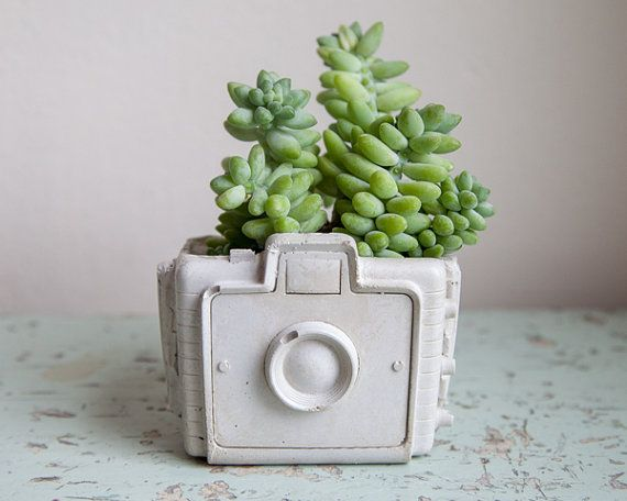 Hand cast from my own mold, this camera planter is a unique design. It is made from smooth concrete and is sealed to protect plants. It has a