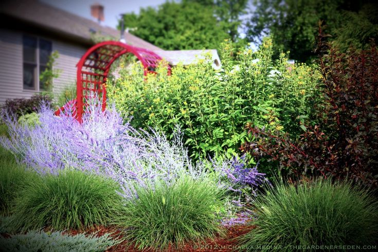 17 Best Images About Shaded Front Garden On Pinterest