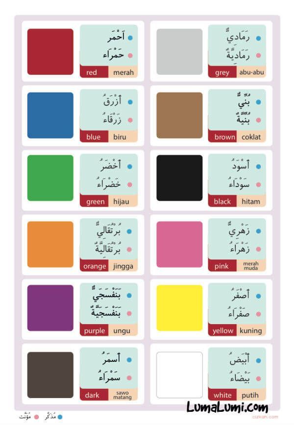 Nama Warna Dalam Bahasa Arab : warna, dalam, bahasa, Belajar, Mengenal, Warna, Dalam, Bahasa, Belajar,, Pendidikan,