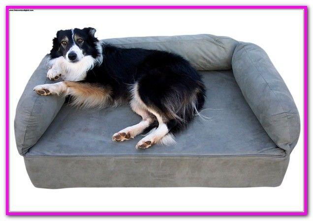 Dog Beds Target Australia Find A Range Of Pet Care At Low Prices At Target Com Au Patch Socks Round Pet Bed 10 Patch Socks Dog S Pets