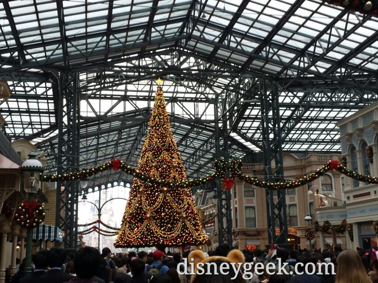 Tokyo Day 4: Tokyo Disneyland - Pictures from the 1st couple hours today
