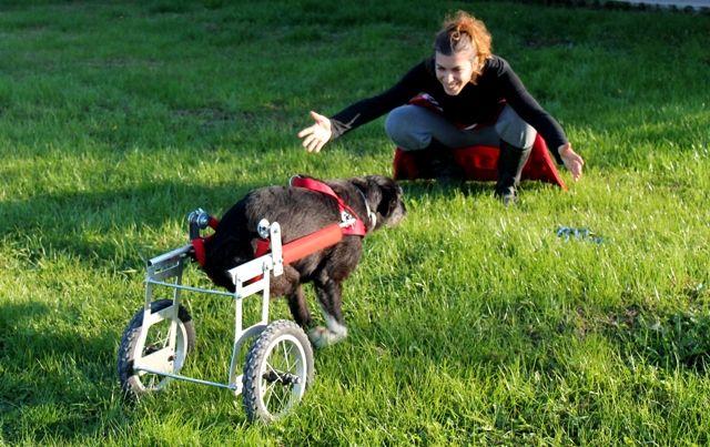 Funziona! Tata corre ad Elisa! / It works! Tata runs to Elisa!
