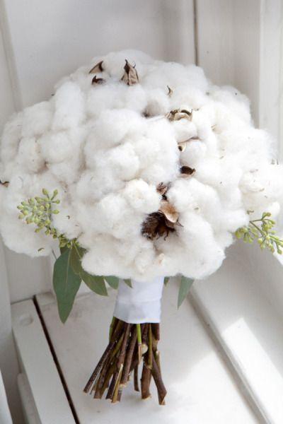 Un bouquet de coton