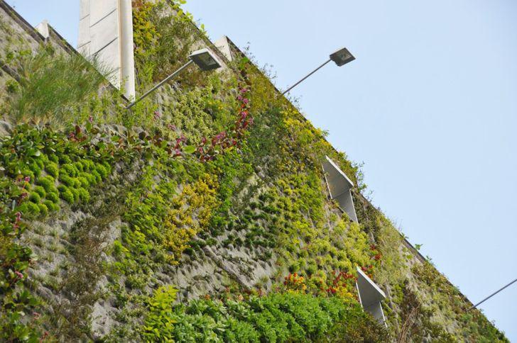 Patrick Blanc Revela Novo Oásis de Aboukir Jardim Vertical para Semana de Design de Paris Patrick Blanc Oasis d'Aboukir - Inhabitat - Design Verde, Inovação, Arquitetura, Edifício Verde