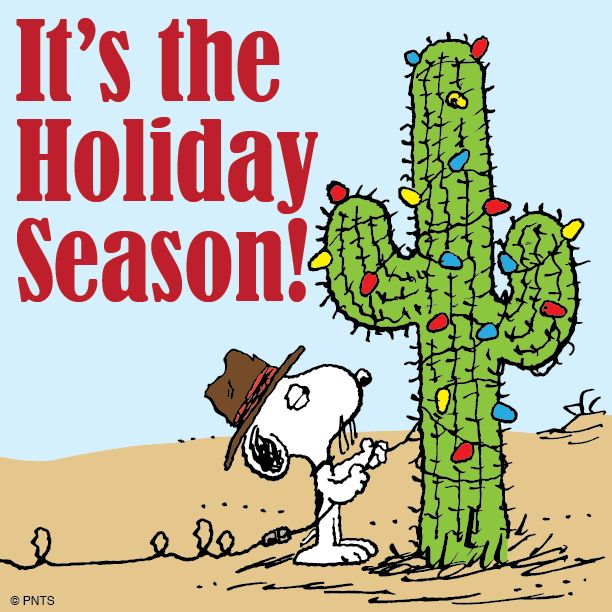snoopy decorates a cactus for christmas - Merry Christmas Snoopy