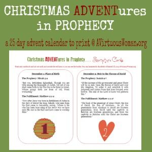 This year why not enjoy the advent season with Scripture readings on the birth, the life, the death, and the resurrection of Jesus Christ?