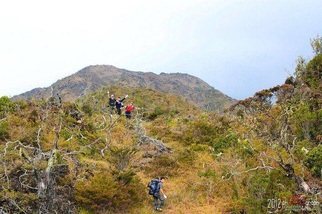"""Gunung Leuser National Parkr"""" http://avaxnews.net/educative/gunung_leuser_national_park.html"""