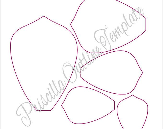 Extra Large Arielle style and leaf paper flower printable templates. Templates make about a 17 inch flower in diameter unless altered. After many requests from my lovely customers I am now offering my templates in a no fill outline form for those who wish to print and cut that way. Print as many times as you need. If you wish to have more formats compatible with cutting machines (SVGs) please click to visit my shop to view options --> CatchingColorflies.etsy.com This is a Digital File, INS...
